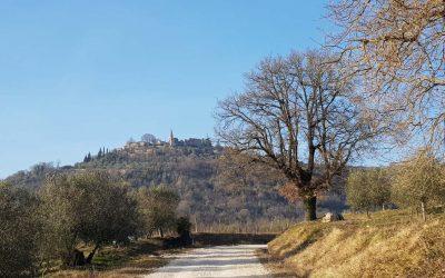 Iz Brtonigle put Parenzane